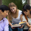 Stock Photo: Woman holding books. Group of young teen students working togeth