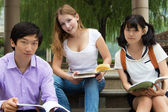 Students study at college park. Teamwork of group young teenager — Stock Photo