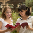 Portrait of young women reading a book at campus — Stock Photo