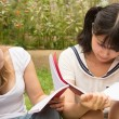 American and Asian students do homework outdoor of college - Foto Stock