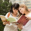 Stock Photo: Young women reading book in the green park