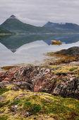 Paesaggio della norvegia — Foto Stock