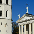 Vilnius Cathedral — Stock Photo