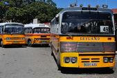 Malta public buses — Stock Photo