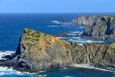 Coast of Portugal — Stock Photo