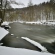 River in winter — Stock Photo #21632099