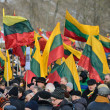 Stock Photo: Independence Day, Lithuania