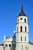 Cathedral of Vilnius — Stock Photo