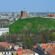Stock Photo: Vilnius, Tower of Gediminas