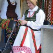 International Folklore Festival — Stock Photo #25848197