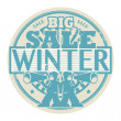 Big Winter Sale stamp — Stock Vector
