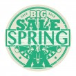 Big Spring Sale stamp — Stock Vector