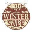 Big Winter Sale stamp — Stock Vector #29656081