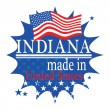 Label with flag and text Made in Indiana — Imagens vectoriais em stock