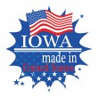 Label with flag and text Made in Iowa — Vector de stock #35171645