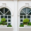 Stock Photo: Two White window