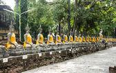 Assis images de Bouddhas à wat yai chai mongkol, ayutthaya, thail — Photo