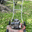 Old lawnmower — Stock Photo #38444125