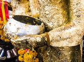 Mão de buda de ouro — Foto Stock