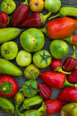 Capsicum and tomato — Stock Photo