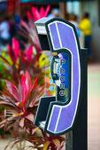 Street telephone signs — Stock Photo