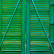 Security Green Gate — Stock Photo