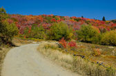 Autumn Dirt trail — Stock Photo