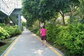 Green road, China's shenzhen — Stok fotoğraf