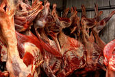 Mutton hanging in cold storage — Stock Photo