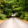 Man walking alone on the road in the forest — Stockfoto
