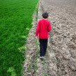 Boy walking and green agricultural with barren field - ストック写真