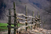 Old wooden fence in the countryside — Stock Photo