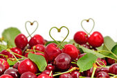 Cherry objects on white background — 图库照片