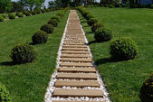 In a beautiful park with wooden walkways — Stock Photo