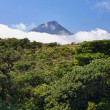 Stock Photo: Volcano Mount Pico at Pico island - HDR image