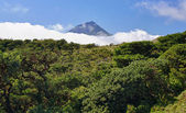 Volcano Mount Pico at Pico island - HDR image — Stock Photo
