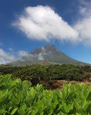 Volcano Mount Pico at Pico island — Stock Photo