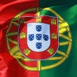 Close-up of a national flag of Portugal — Stok fotoğraf