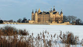 Castle of Schwerin in winter times — Stock Photo