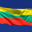 Flag of Lithuania in the sun — Stock Photo