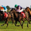 Stock Photo: Horse Race 05