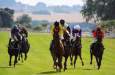 Horse Race 03 — Stock Photo