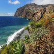 Cliff Cabo Girao at southern coast of Madeira  Portugal  01 — 图库照片
