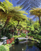 Tropical Garden Monte Palace Madeira, Portugal — Stock Photo