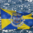 Flag of city Camara de Lobos - Madeira, Portugal — Stockfoto