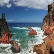 Northern coastline of Ponta de Sao Lourenco Madeira, Portugal 04 — Stock Photo #36271399