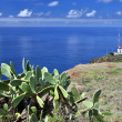 Lighthouse of Ponta do Pargo - Madeira, Portugal — Stock Photo