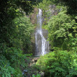 Stock Photo: WailuFalls (Maui, Hawaii)