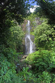 Wailua falls (maui, hawaii) — Foto Stock