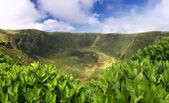Volcanic Caldeira of Faial, Azores islands — Stock Photo